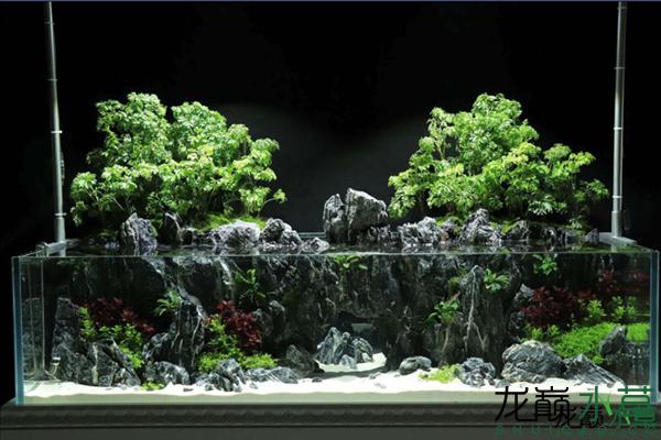 水陆2_副本.png