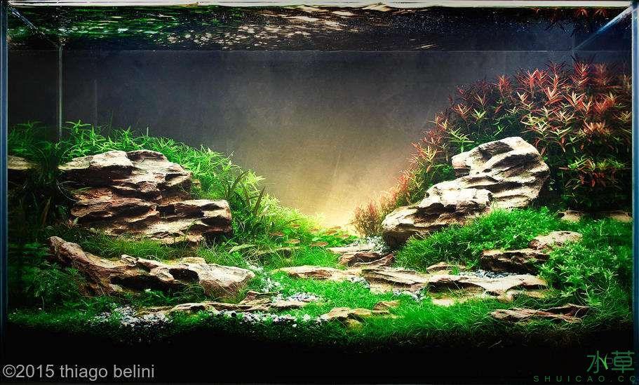 松皮石S13.jpg