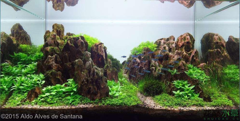 松皮石S14.jpg