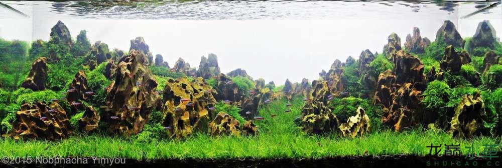 松皮石L13.jpg