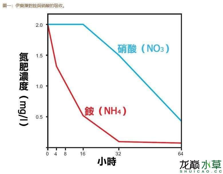 水草对毒素的吸收.JPG