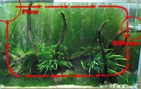 水草缸水流.JPG