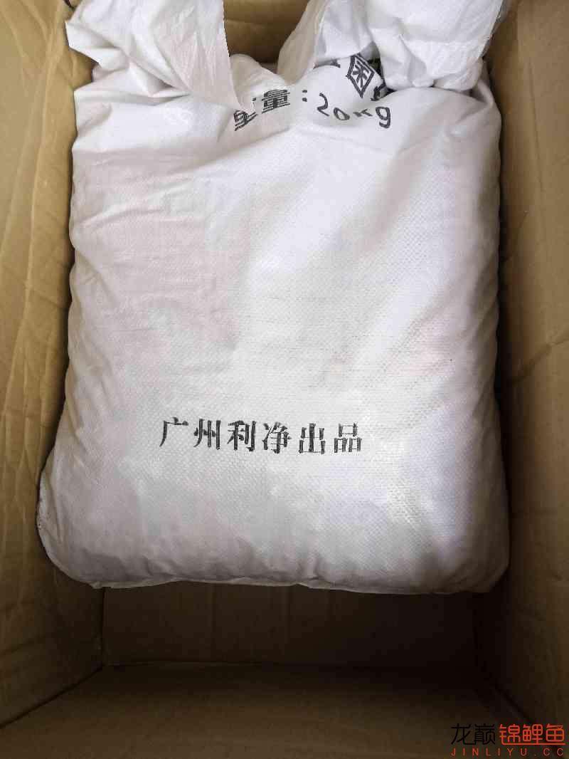 最后的折腾:滴滤 杭州水族批发市场 杭州龙鱼第2张