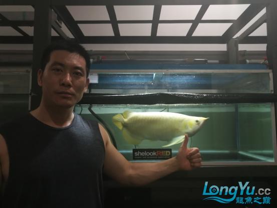 御龙渔业龙颠超级访问2698.png