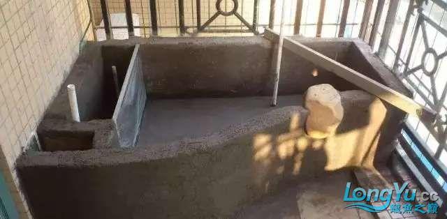 池子2.webp.jpg