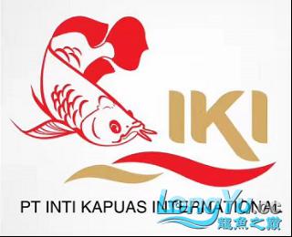 超级访问:印尼IKI集团 (1)(1)70.png