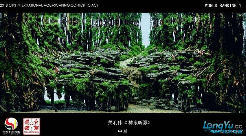 1 关利伟 中国.jpg