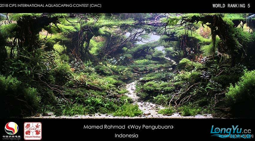 5-Mamed Rahmad Indonesia.jpg