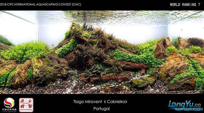 7-Tiago Miravent Portugal.jpg
