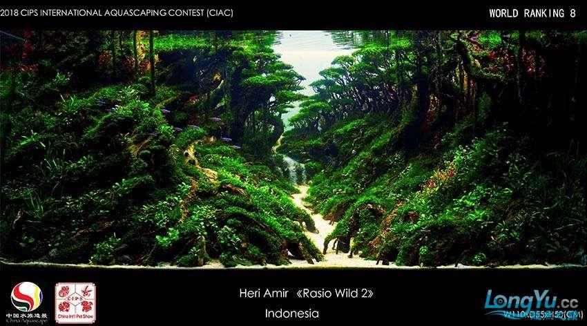 8-Heri Amir indonesia.jpg