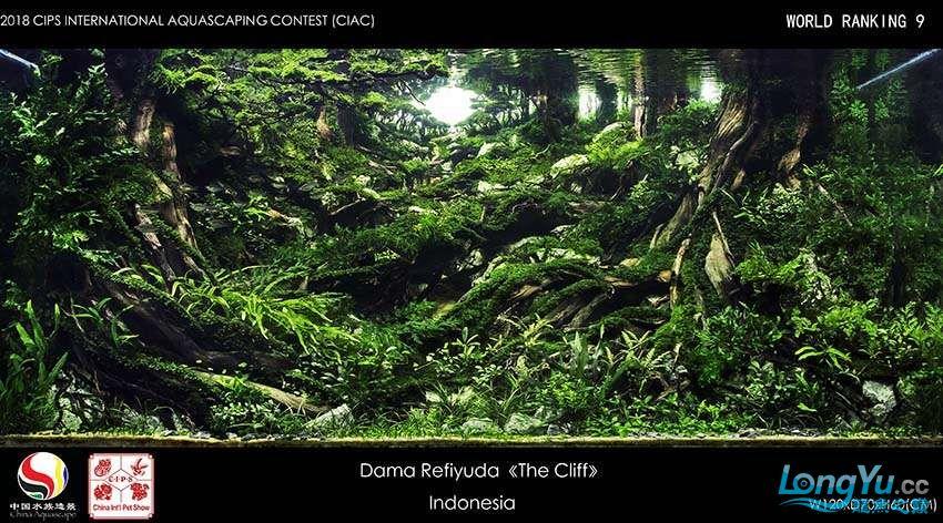 9-Dama Refiyuda Indonesia.jpg