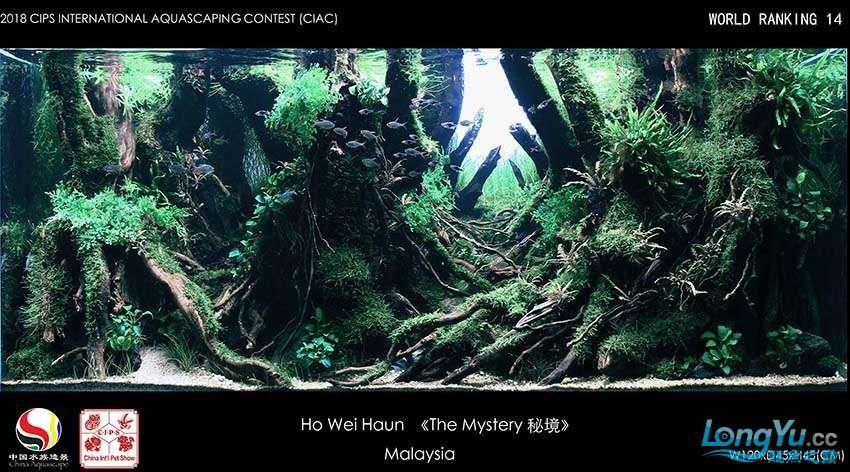 14-Ho Wei Haun  Malaysian.jpg