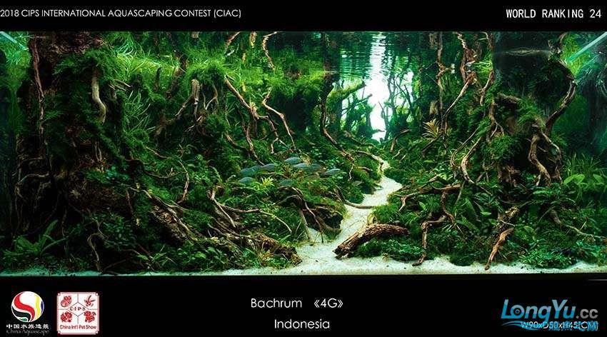 24-Bachrum Indonesia名称问题.jpg
