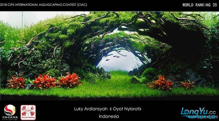 25-Luky Ardiansyah Indonesia.jpg