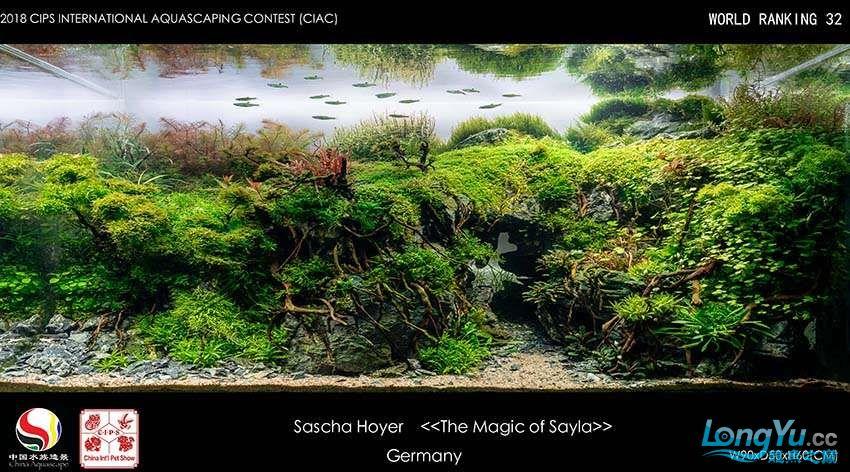 32-Sascha Hoyer Germany待定.jpg
