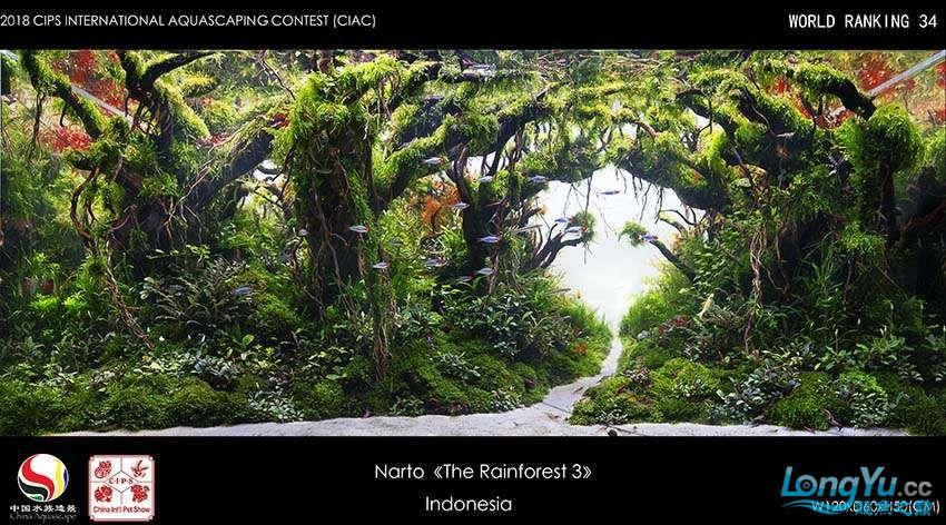 34-Narto Indonesia.jpg