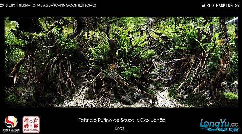 39-Fabricio Rufino de Souza Brasil.jpg