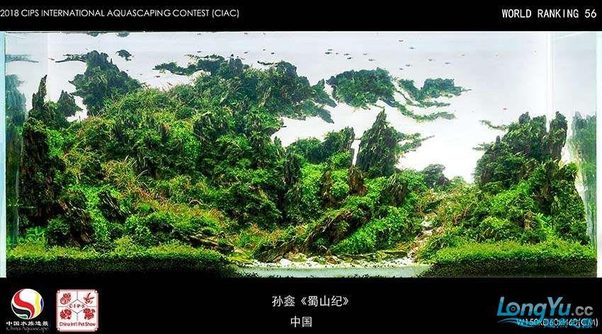 56-孙鑫 中国.jpg