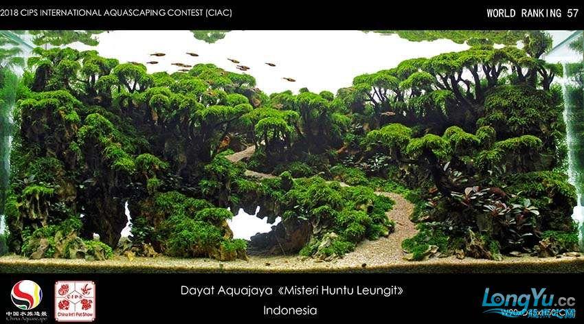 57-Dayat Aquajaya Indonesia.jpg