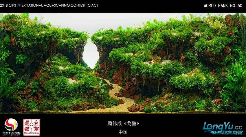 60-周伟成 中国.jpg
