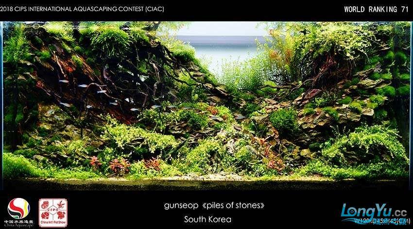 71-gunseop South Korea.jpg