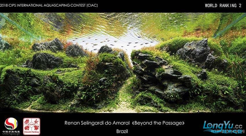 2 Renan Selingardi do Amaral.jpg