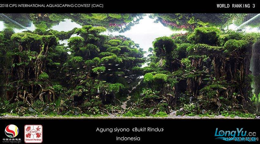 3-Agung siyono Indonesia.jpg