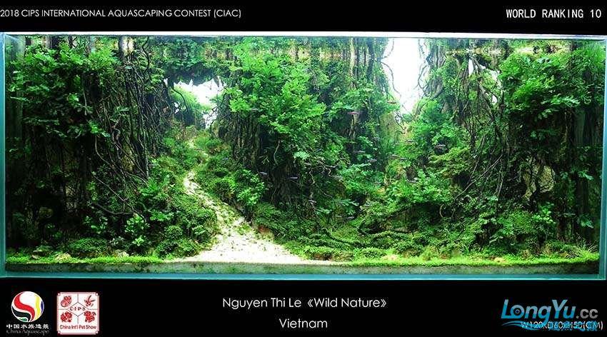 10-Nguyen Thi Le Viet Nam.jpg
