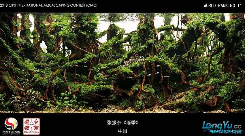 11张振东 中国.jpg