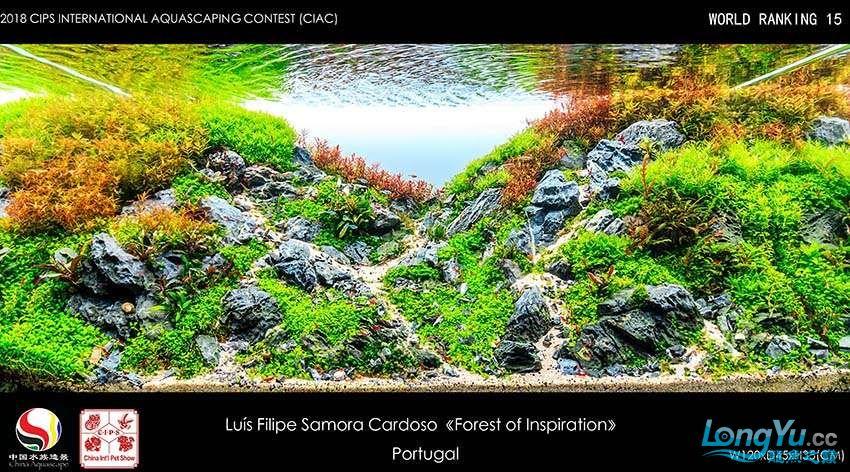 15-Luís Filipe Samora Cardoso portugal.jpg