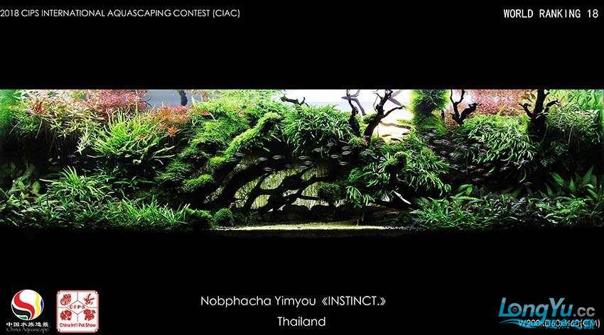 18-Nobphacha Yimyou Thailand.jpg