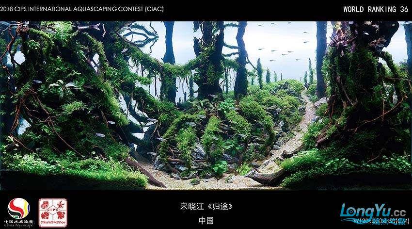 36-宋晓江 中国.jpg