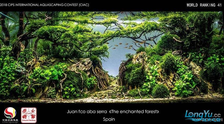 41-Juan fco aba serra Espaa.jpg