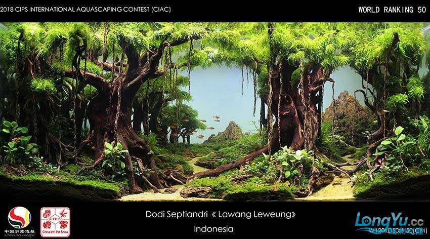 50-Dodi Septiandri Indonesia.jpg