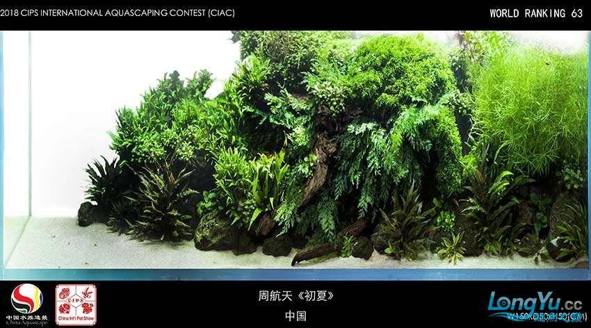 63-周航天 中国.jpg