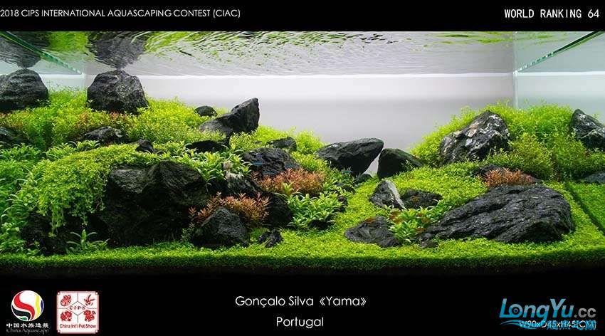 64-Gonçalo Silva Portugal.jpg