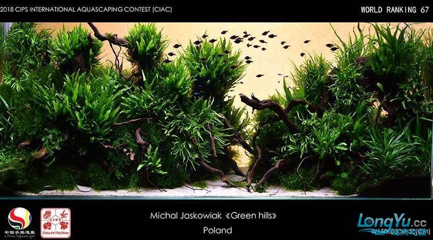 67-Michal Jaskowiak Poland.jpg