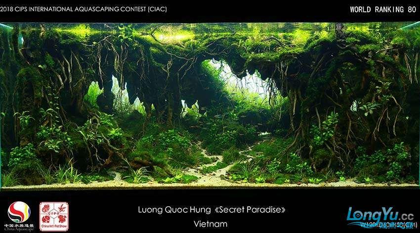 80-Luong Quoc Hung Viet nam.jpg