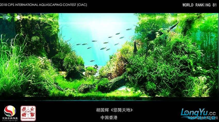81 胡国辉 中国香港.jpg