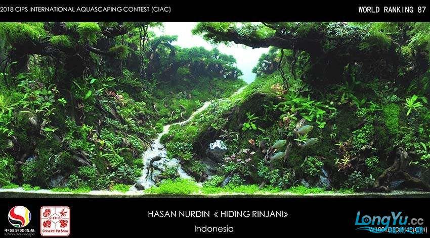 87-HASAN NURDIN Indonesia.jpg