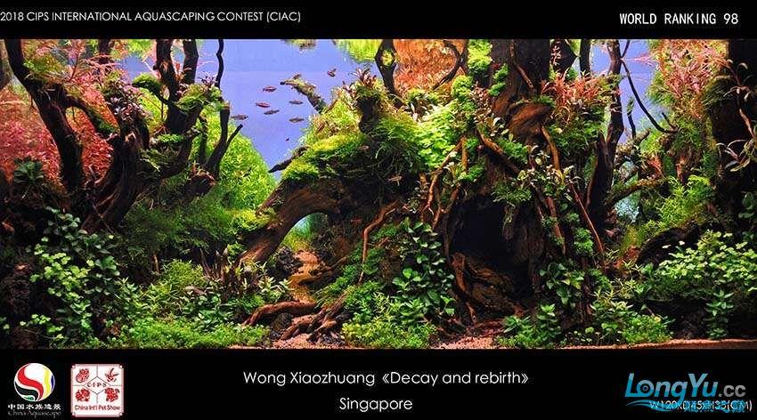 98- Wong Xiaozhuang Singapore.jpg