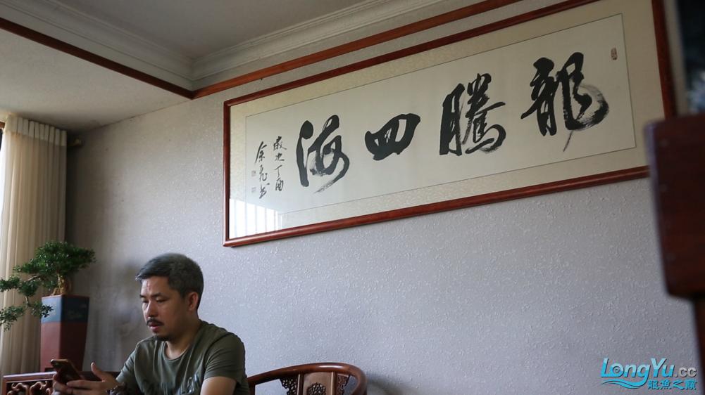 龙腾四海010.png