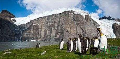 南极夏天.jpg