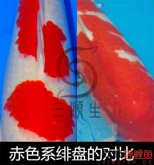 791_副本_副本.jpg