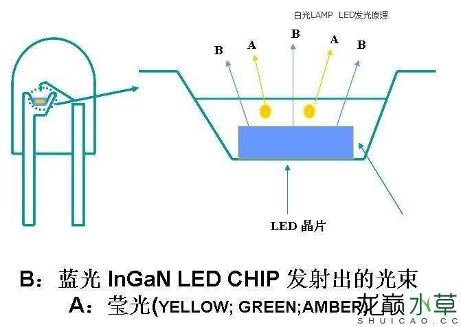 LED灯珠结构2.jpg