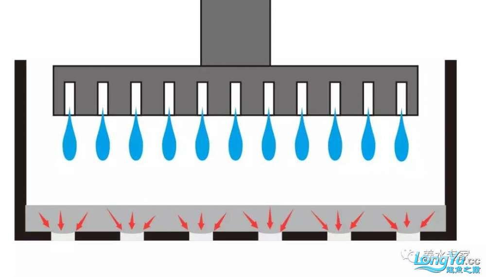 微信图片5.jpg