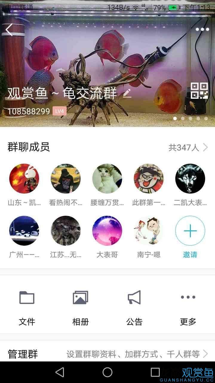 Screenshot_20181203-131314.png
