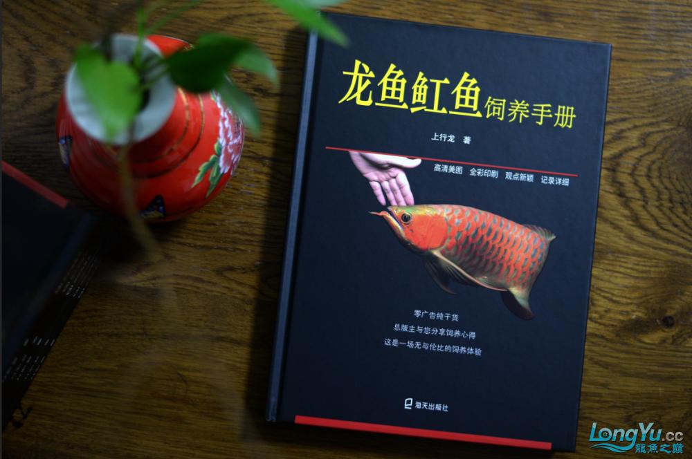 首期发行你有一本龙鱼魟鱼饲养手册待领取 营口龙鱼论坛 营口龙鱼第3张
