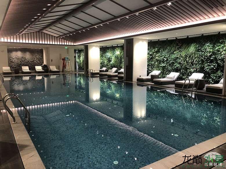 泳池雨林缸2.jpg
