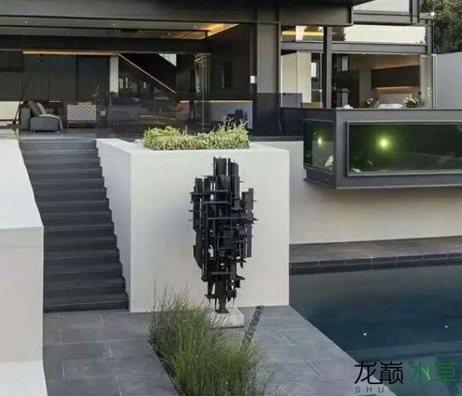 泳池鱼缸1.jpg